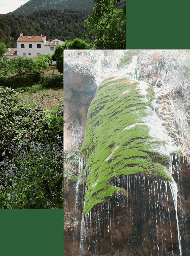 alrededores casas rurales segura natura la puerta de la sierra
